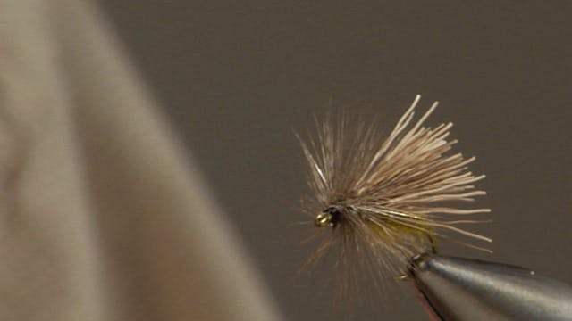 Bob Jacklin Yellowstone Patterns: Fluttering Caddis