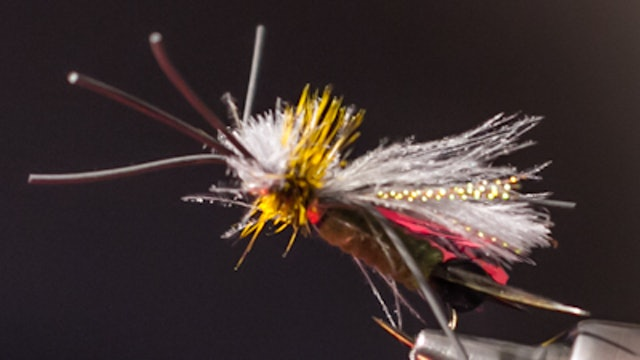 Ben Byng: Skwala Stone Dry Fly
