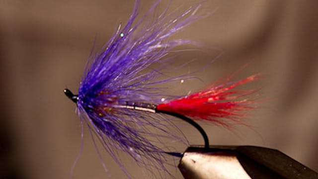 Jerry Criss: TLF Steelhead Magic
