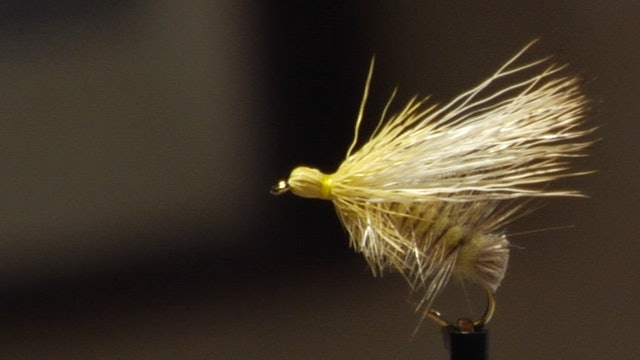 Bob Jacklin Yellowstone Patterns: Yellow Sally