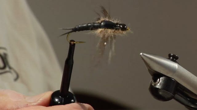 Bob Jacklin Yellowstone Patterns: Salmon Fly (Nymph)