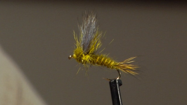 Bob Jacklin Yellowstone Patterns: Green Drake