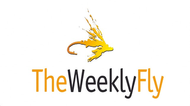 The Weekly Fly: The Entire Library