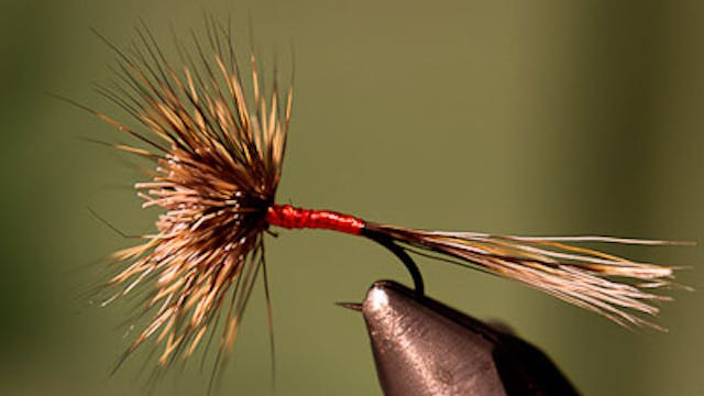 Randy Flynn: Woven Hair Hackle Dry Fly