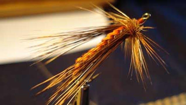 Randy Flynn: Skating Cranefly