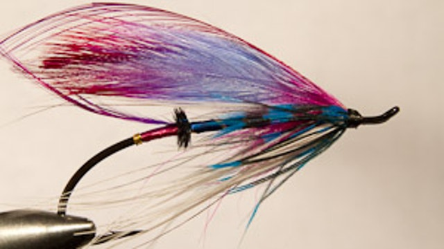 Rocky Maley: Blue Bird Spey