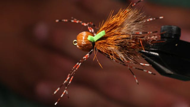 "Clark ""Cheech"" Pierce:  Petite Stone Fly"