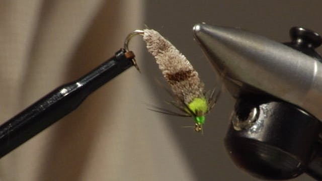 Bob Jacklin Yellowstone Patterns: Caddis in a Case
