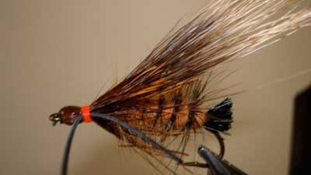 Bob Jacklin: Giant Salmon Fly