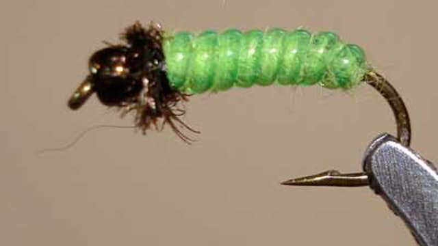 Bob Jacklin: Green Caddis Rock Worm