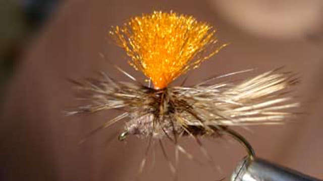 Dave Bloom: Bloom's Emergent PMD Nymph