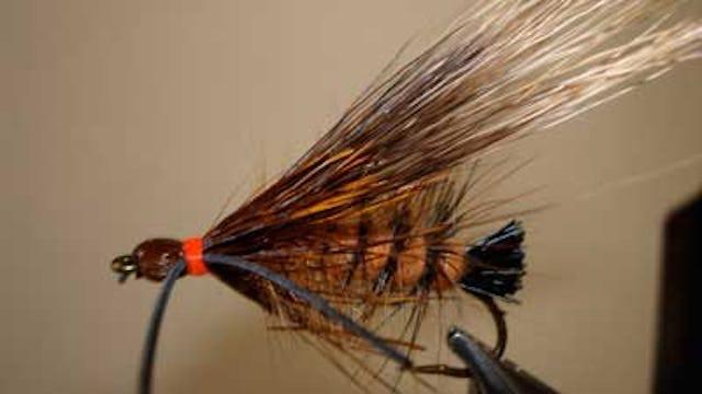 Bob Jacklin: Giant Salmon Fly