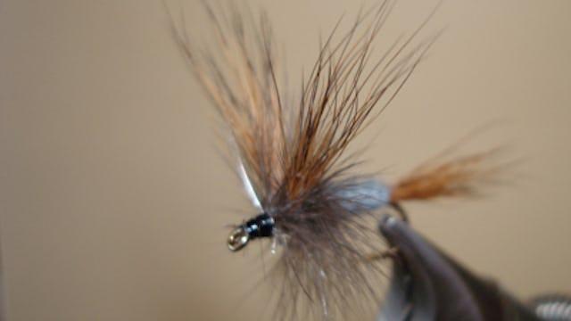 Bob Jacklin: Grey Wulff