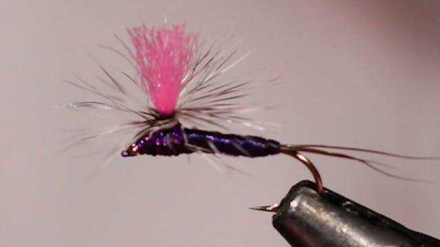 Dandy Reiner: Purple Haze