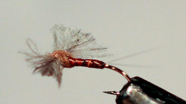 Dandy Reiner: Rusty Spinner
