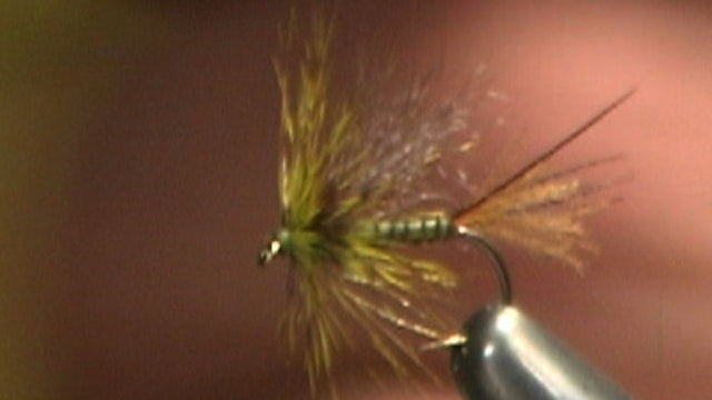 Howard Cole: Unusual Usual Flav Biot Emerger