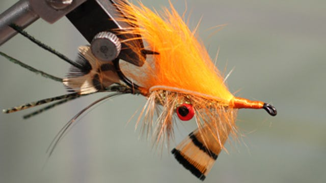 Boots Allen: Lantham Crayfish