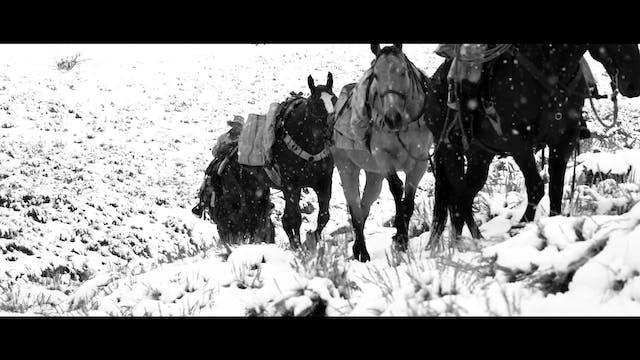 S7 | Elk Rodeo