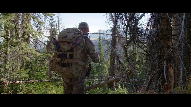 S4 | Back in Bear Country | Darkest Night