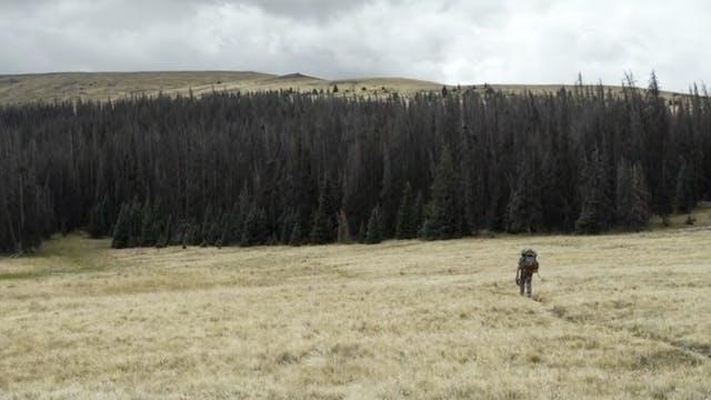 S7 | Colorado Curse