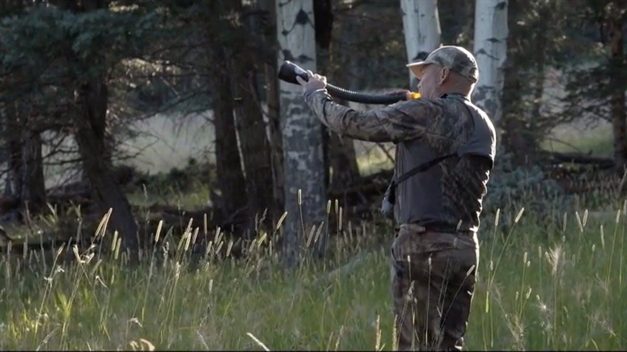 S8 I The Elk Woods - 2 Part