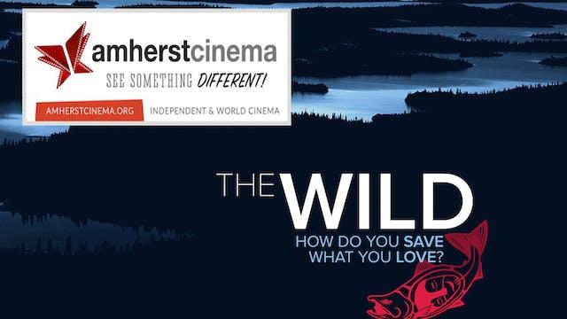 The Wild ~ Virtual Tour ~ Amherst Cinema