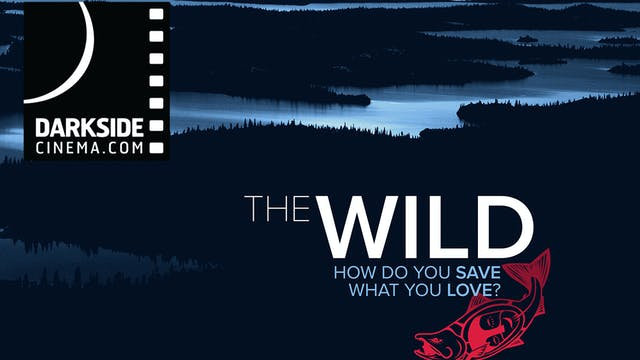 The Wild ~ Virtual Tour ~ Darkside Cinema