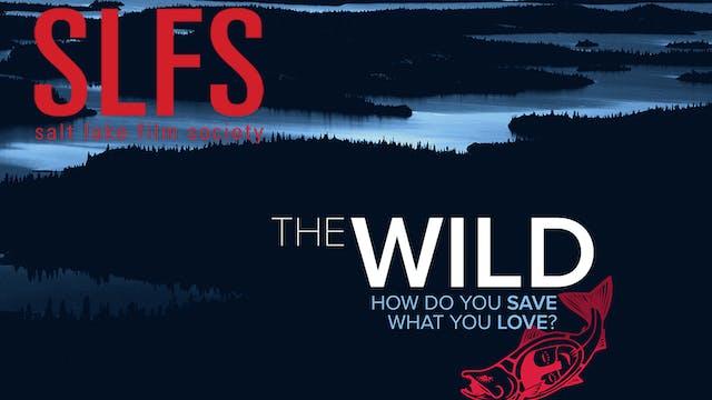 The Wild ~ Virtual Tour ~ SLFS