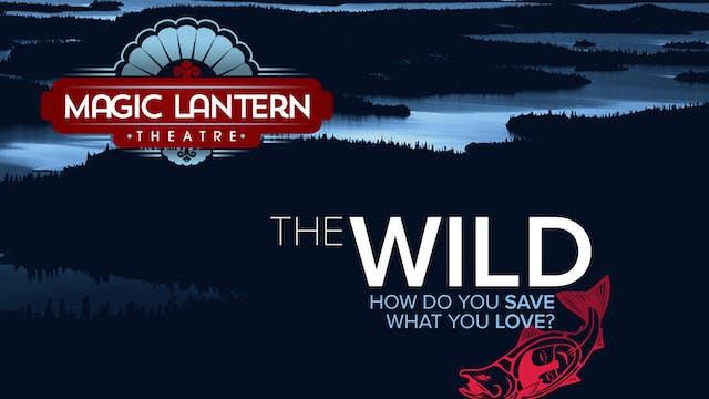 The Wild ~ Magic Lantern  Theatre - Virtual Tour