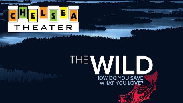 The Wild ~ Virtual Tour ~ Chelsea Theater