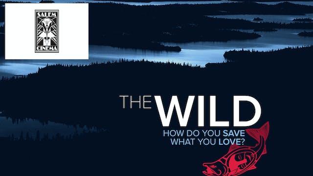 The Wild ~ Virtual Tour ~ Salem Cinema