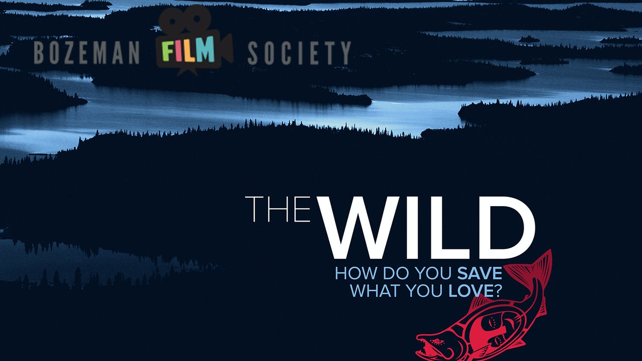 The Wild ~ Virtual Tour ~ Bozeman Film Society