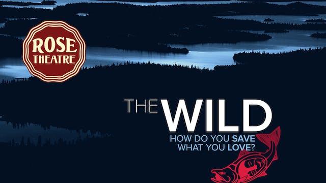 The Wild ~ Virtual Tour ~ Rose Theatre