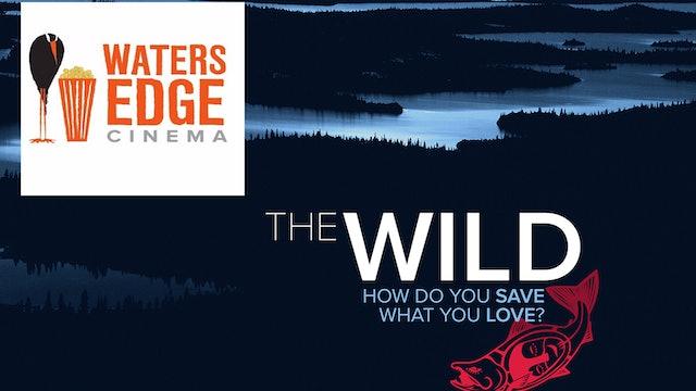 The Wild ~ Virtual Tour ~ Waters Edge Cinema