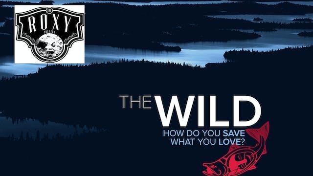 The Wild ~ Virtual Tour ~ The Roxy Theater