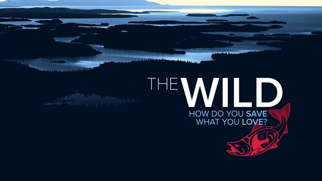 The Wild ~ How Do You Save What You Love?