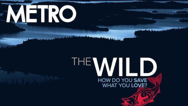 The Wild ~ Virtual Tour ~ Metro Cinema