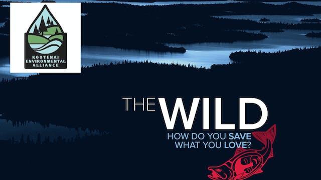 The Wild ~ Kootenai Environmental Alliance