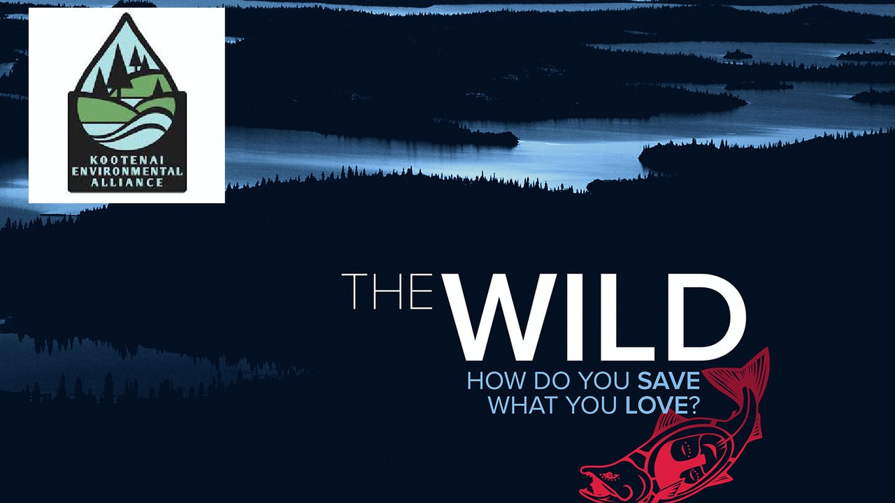 The Wild ~ Kootenai Environmental Alliance