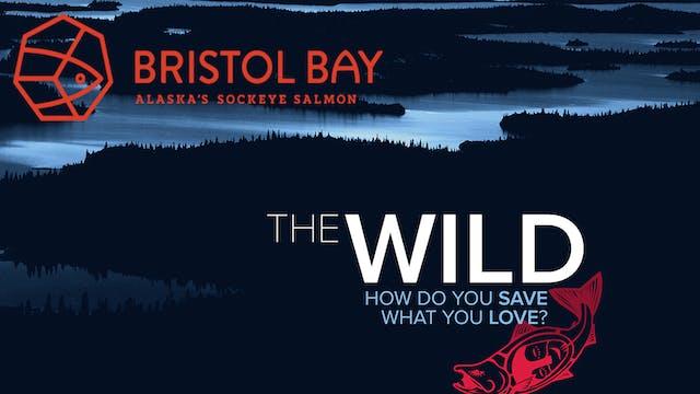 The Wild + BBRSDA