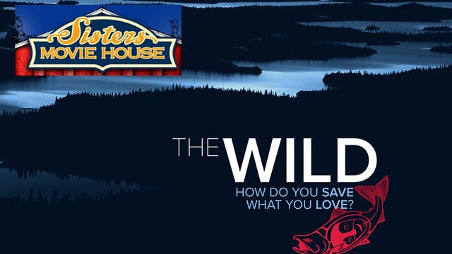 The Wild ~ Virtual Tour ~ Sisters Movie House