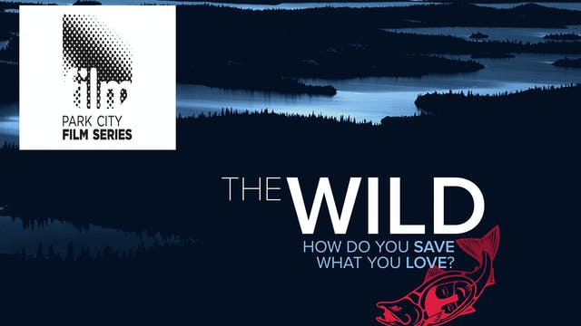 The Wild ~ Virtual Tour ~ Park City Film Series