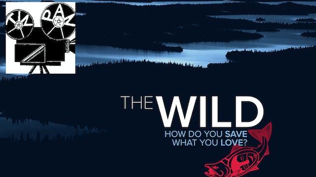 The Wild ~ Virtual Tour ~ Tin Pan
