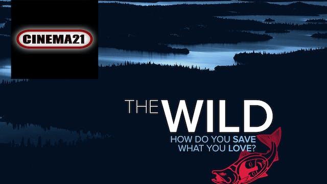 The Wild ~ Virtual Tour ~ Cinema 21