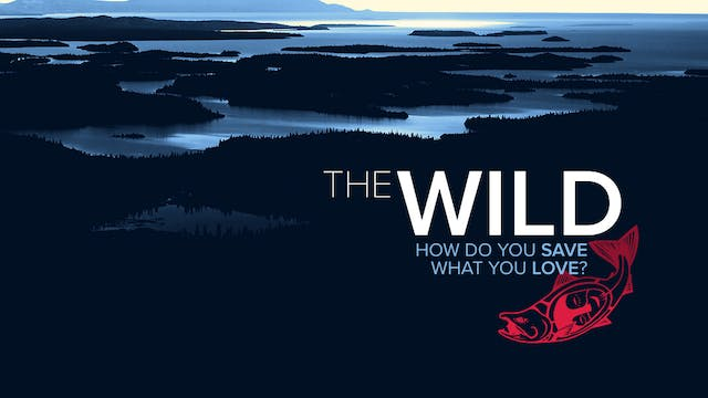 The Wild - Save What You Love - Gifted