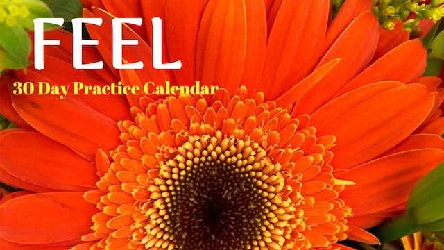 FEEL | 30 Day Practice Calendar | Nov '19