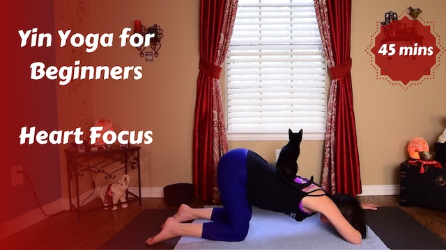Yin Yoga for Beginners | Heart Focus