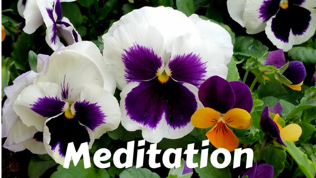 Members Only Meditations