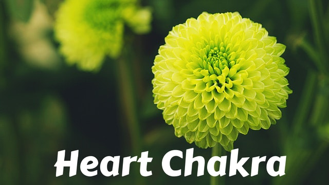 Heart Chakra | Anahata