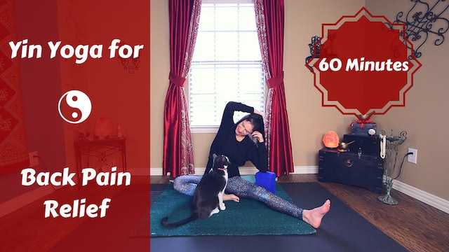 Yin Yoga for Back Pain & Discomfort Relief
